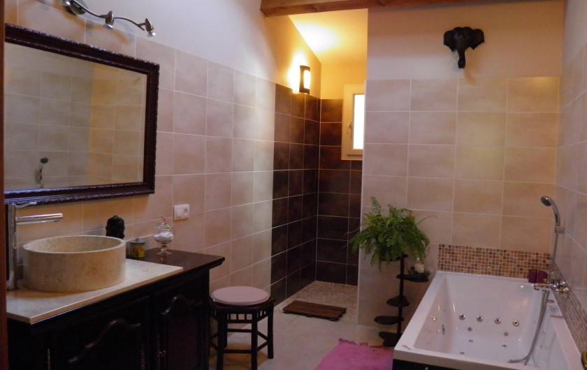 Location de vacances - Villa à Saint-Michel-d'Euzet - La salle de bain avec baignoire balnéo et douche italienne