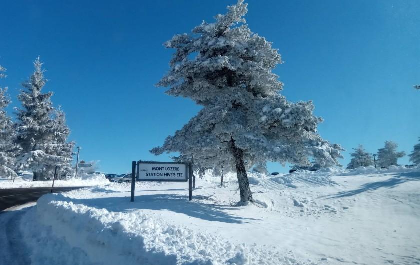 Location de vacances - Gîte à Le Pont-de-Montvert - Neige Lozère 2