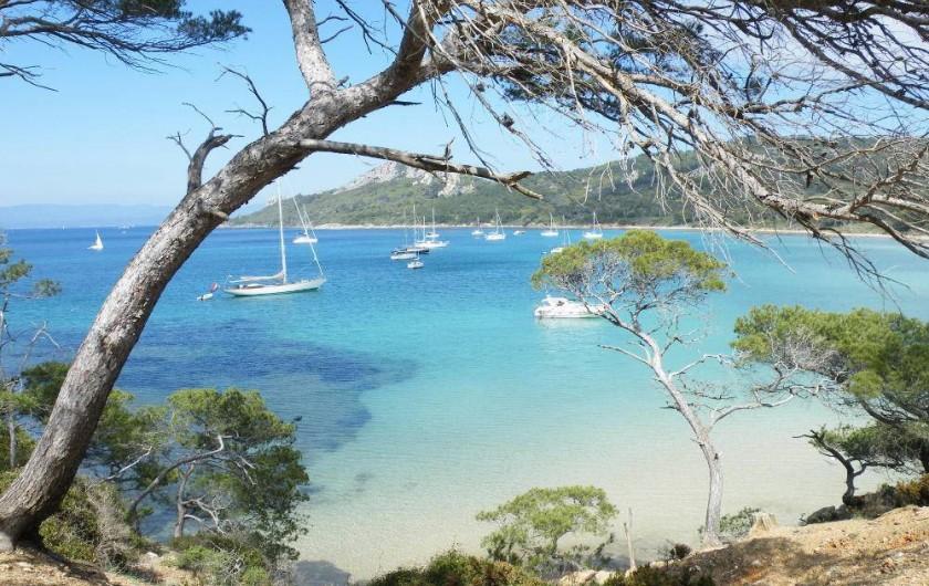 Location de vacances - Studio à Cavalaire-sur-Mer - La transparence de la mer
