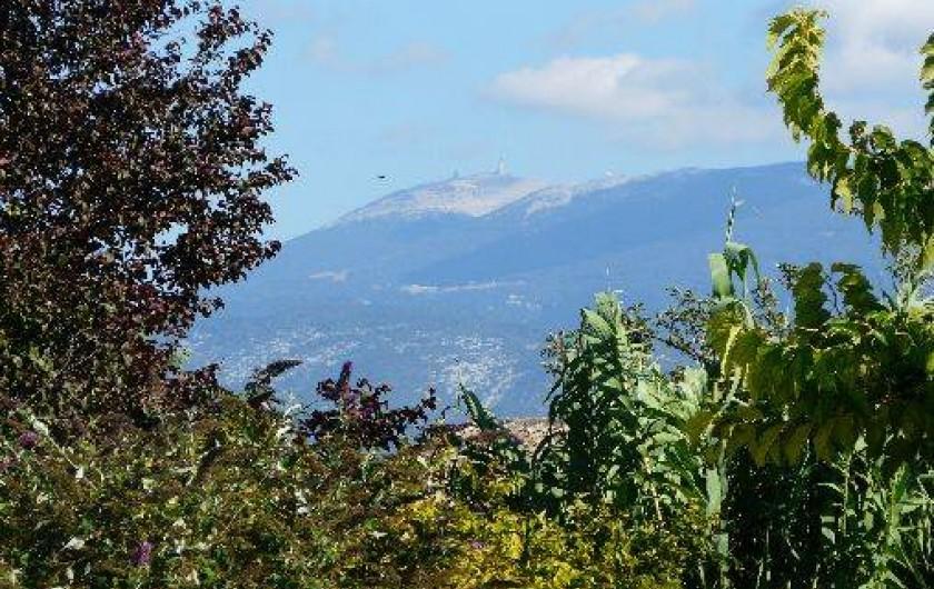 Location de vacances - Villa à Vaison-la-Romaine - vue sur le Mont Ventoux depuis la piscine