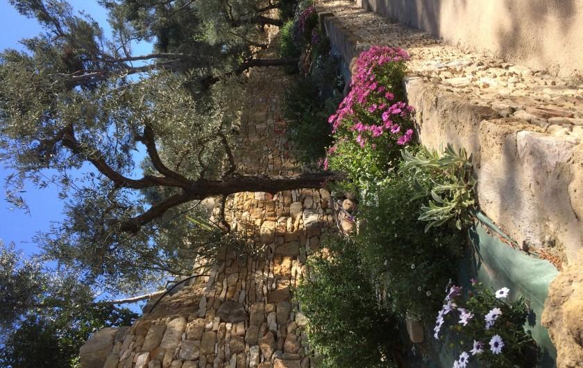 Location de vacances - Mas à Orgon - jardin