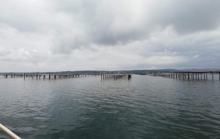 Location de vacances - Péniche à Frontignan - VISITE DES PARC A HUÎTRE DE BOUZIGUE PENDENT LA PROMENADE