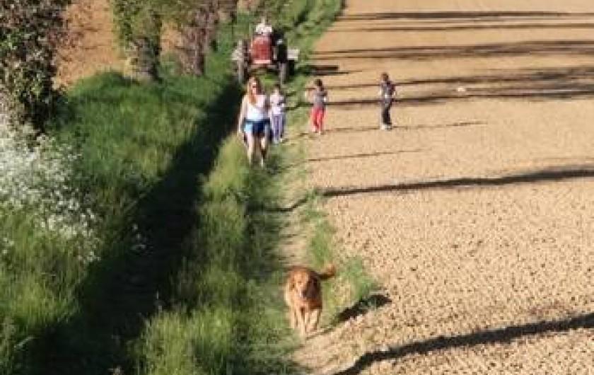 Location de vacances - Maison - Villa à Monfort - Des dizaines de Kilomètres de chemins de randonnée dans la campagne