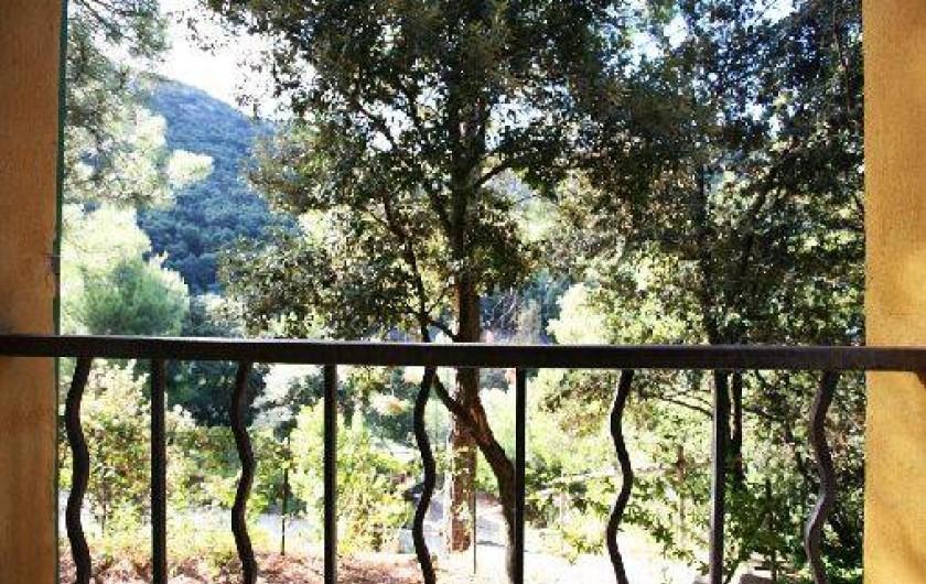 Location de vacances - Gîte à Olmeta-di-Capocorso