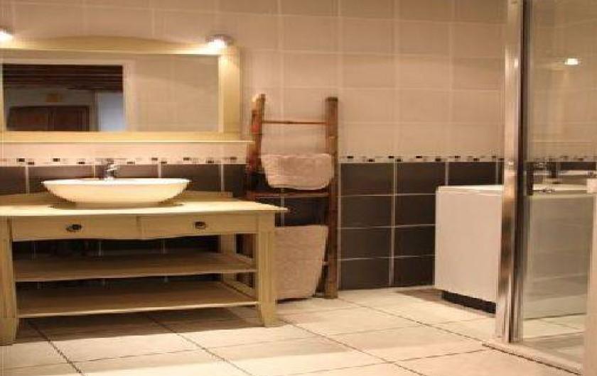 Location de vacances - Gîte à Rochepaule - coin salle de bain avec douche