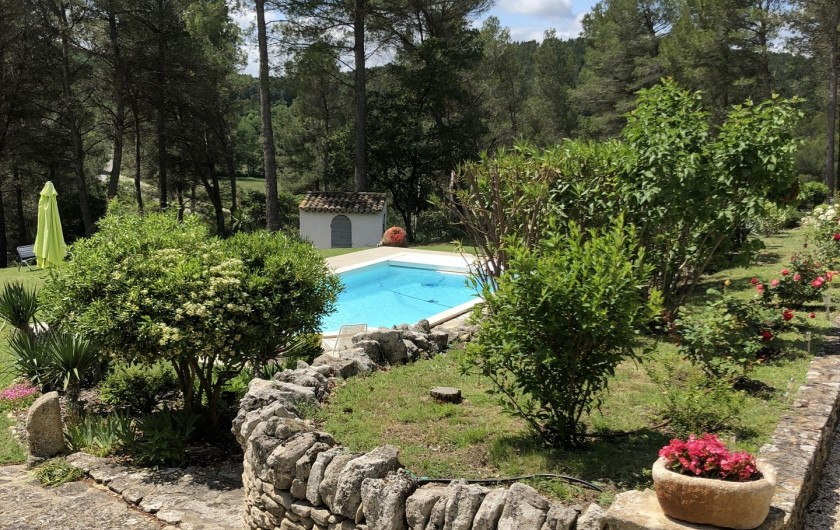 Location de vacances - Gîte à Pernes-les-Fontaines - Vue de la piscine à partir de la pinède