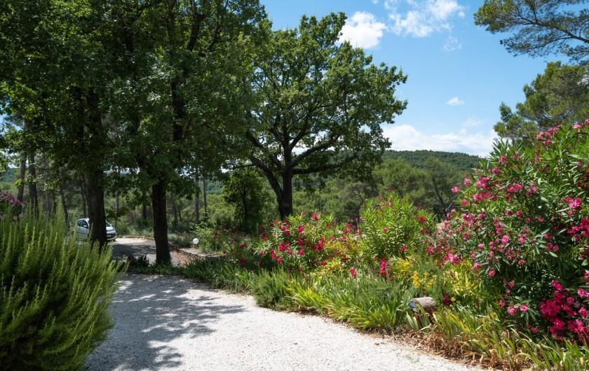 Location de vacances - Gîte à Pernes-les-Fontaines - Chemin de balade