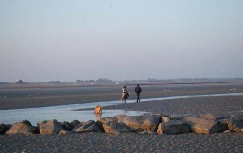 Location de vacances - Gîte à Hauteville-sur-Mer - Balade en hiver sur la plage