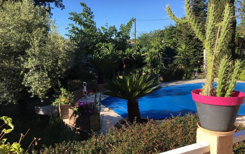 Location de vacances - Villa à Prunelli-di-Fiumorbo - vue piscine et jardin d'une des chambres