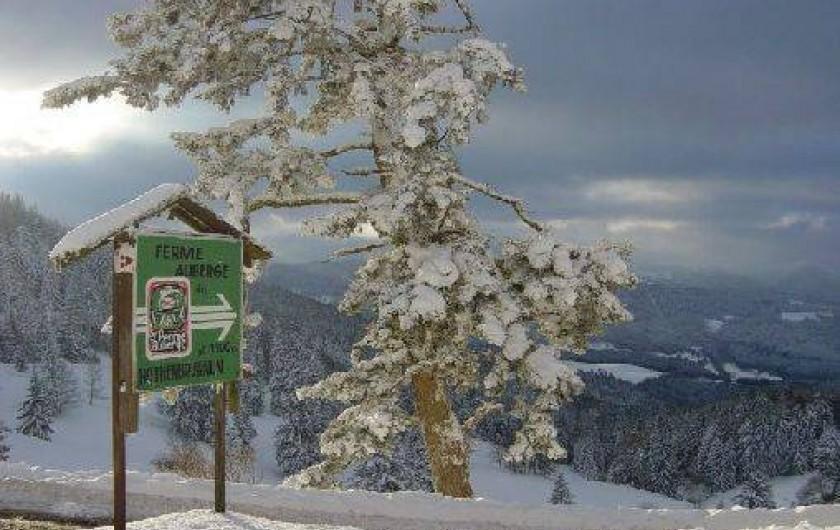 Location de vacances - Appartement à Sondernach - Montagne