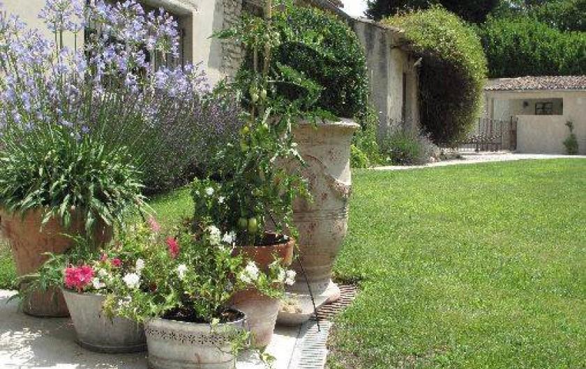 Location de vacances - Chambre d'hôtes à Loriol-du-Comtat - Le jardin fleuri