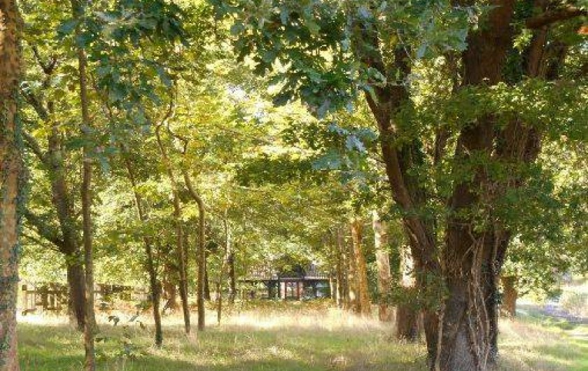 Location de vacances - Maison - Villa à Soustons