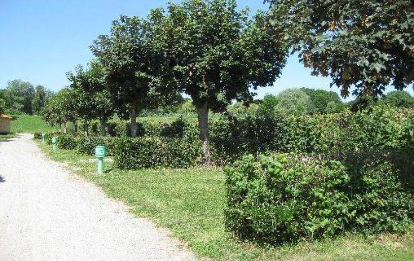 Location de vacances - Camping à Bellenaves - Mini-camping : Emplacements nus avec électricité en option