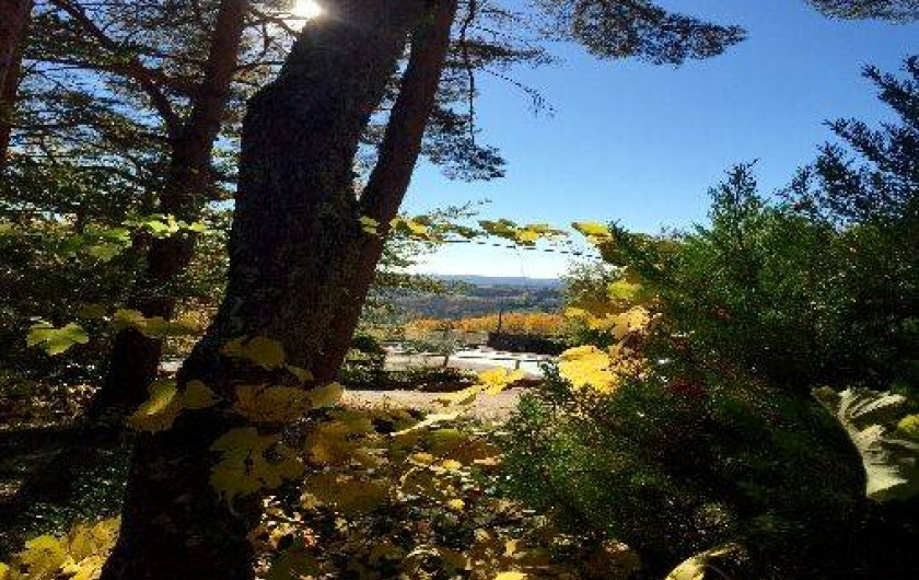 Location de vacances - Gîte à Puy-d'Arnac - Vue de la terrasse