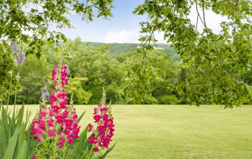 Location de vacances - Maison - Villa à Montcuq - Fleurs, arbustes et arbres