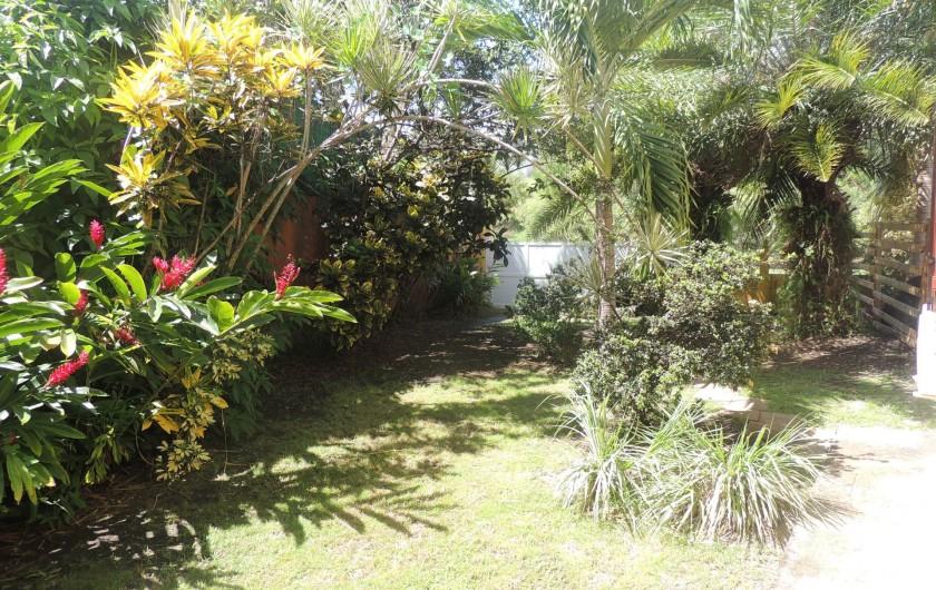 Location de vacances - Appartement à Le Gosier - Le jardin tropical privatif