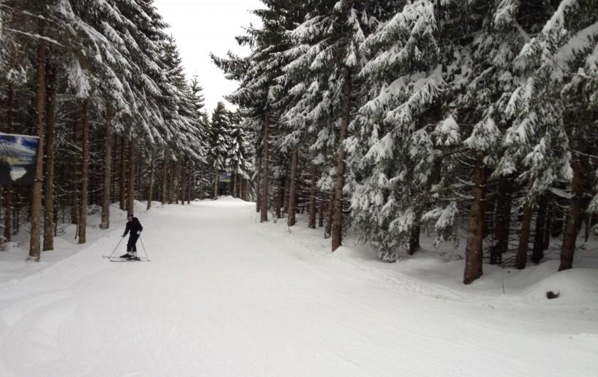 Location de vacances - Chalet à Tendon - SKI GERARDMER