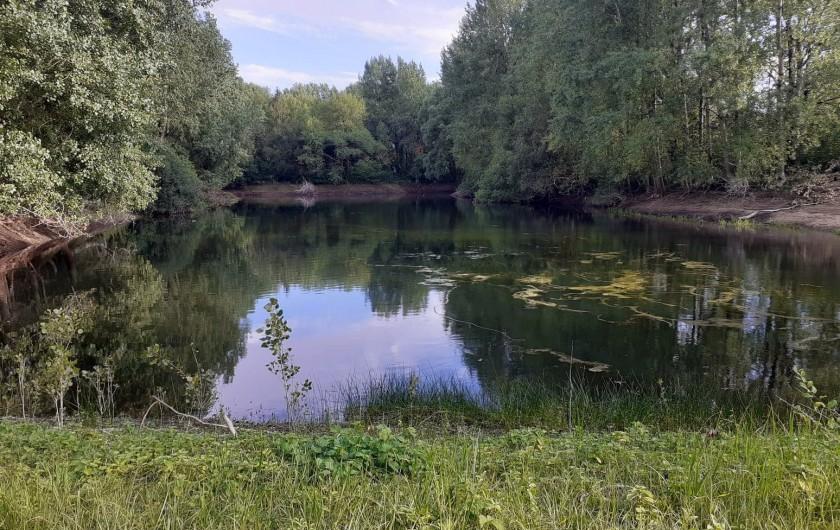 Location de vacances - Bungalow - Mobilhome à Camiers - Lac