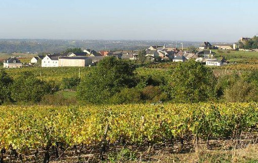 Location de vacances - Studio à Saint-Aubin-de-Luigné - Le hameau des Barres depuis le vignoble