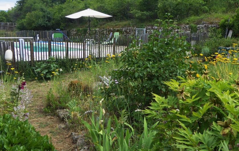 Location de vacances - Villa à Saignon - piscine vue de la terrasse