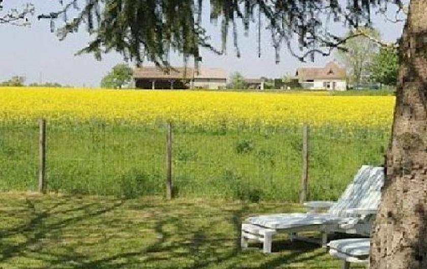Location de vacances - Gîte à Villeréal
