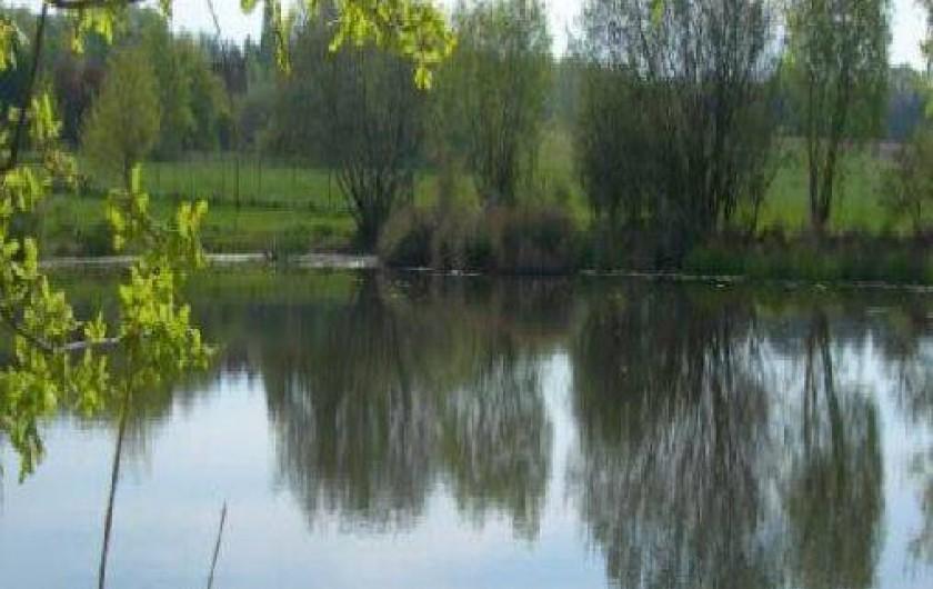 Location de vacances - Gîte à Cour-Cheverny
