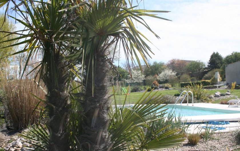 Location de vacances - Gîte à Labastide-de-Lévis - Piscine 7X4 (30°C) Exposée plein soleil