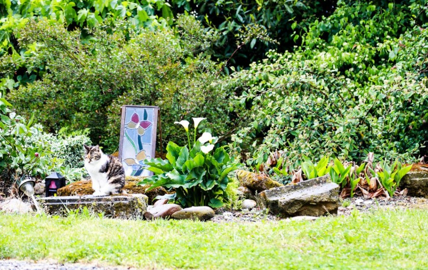 Location de vacances - Gîte à Madiran - Gardens