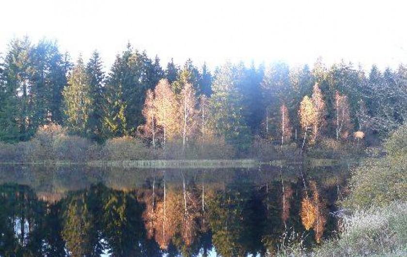 Location de vacances - Chambre d'hôtes à Amont-et-Effreney - Un des nombreux étangs
