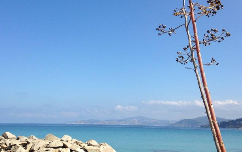 Location de vacances - Appartement à L'Île-Rousse - et grande plage de sable à proximité immédiate!