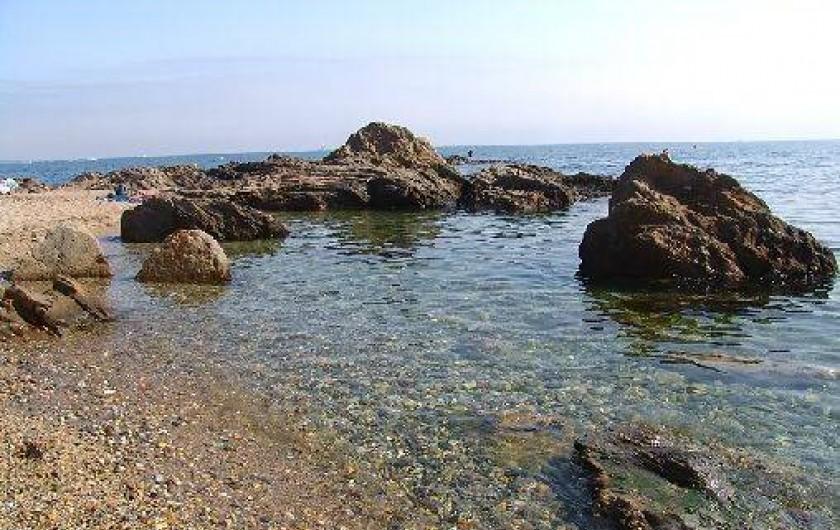Location de vacances - Appartement à Argelès-sur-Mer - Le Racou
