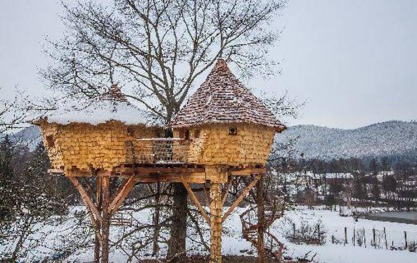 Location de vacances - Cabane dans les arbres à Saint-Dié-des-Vosges