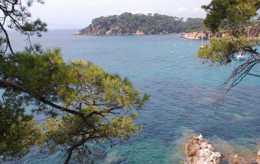 Location de vacances - Chambre d'hôtes à Cuers - la mer et les iles d'or à quelques kilométres