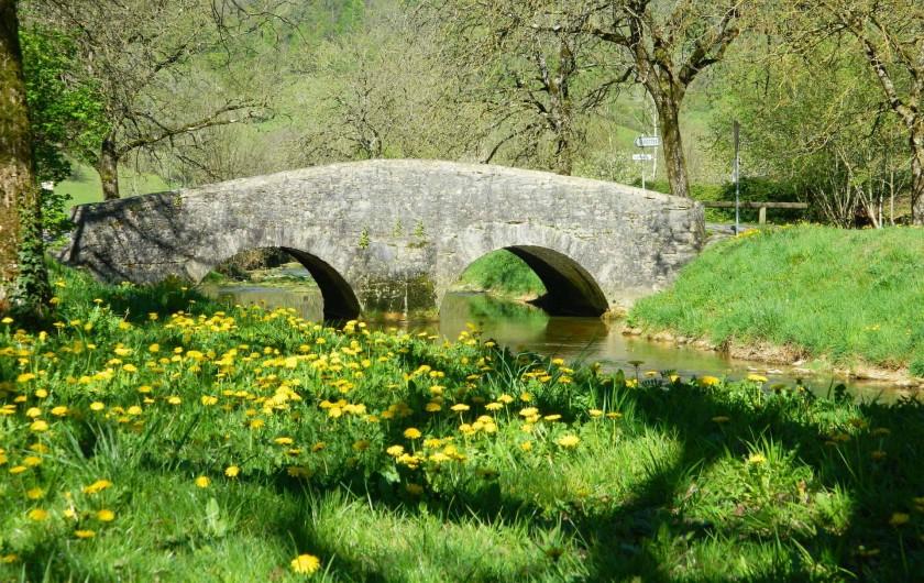 Location de vacances - Gîte à Baume-les-Messieurs - Pont Romain, à côté du gîte.