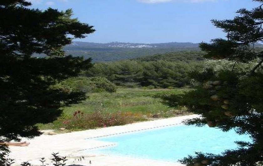 Location de vacances - Gîte à Le Beausset - une piscine au milieu de la nature....et les collines au loin