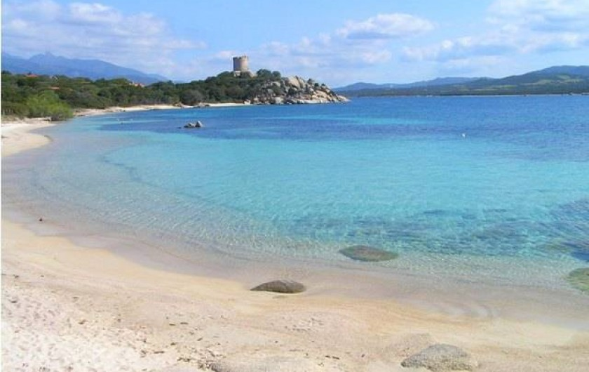 Location de vacances - Appartement à Pianottoli-Caldarello - plage de pianottoli