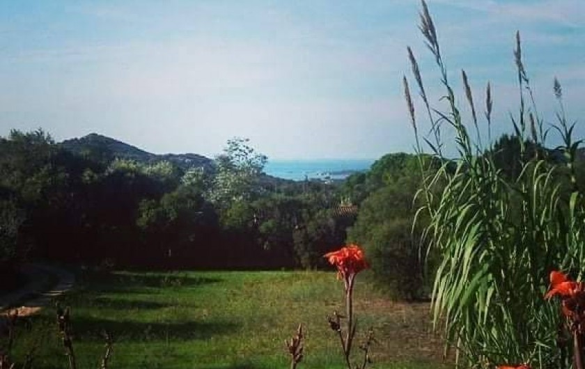 Location de vacances - Appartement à Pianottoli-Caldarello - vue terrasse