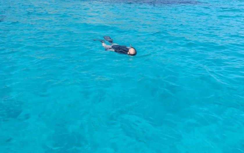 Location de vacances - Appartement à Pianottoli-Caldarello - baie de la plage de corail