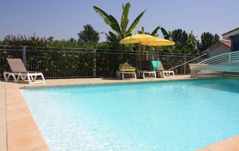 Location de vacances - Gîte à Lafrançaise - Autour de votre piscine végétation, fleurs.