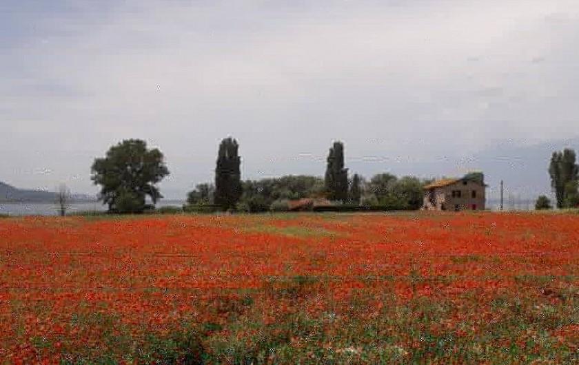 Location de vacances - Appartement à Castel Rigone - Sur le lac Trasimène