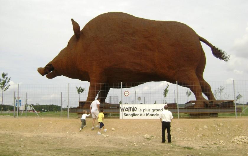 Location de vacances - Gîte à Girondelle - woinic