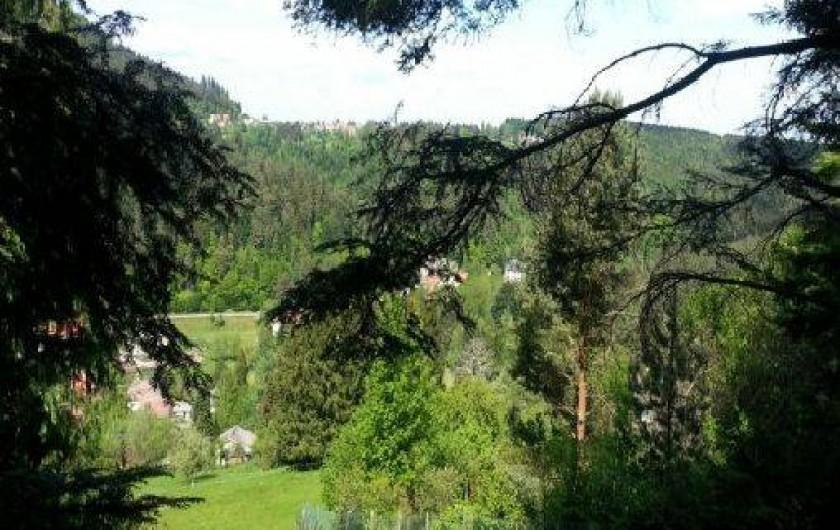 Location de vacances - Gîte à Wangenbourg-Engenthal