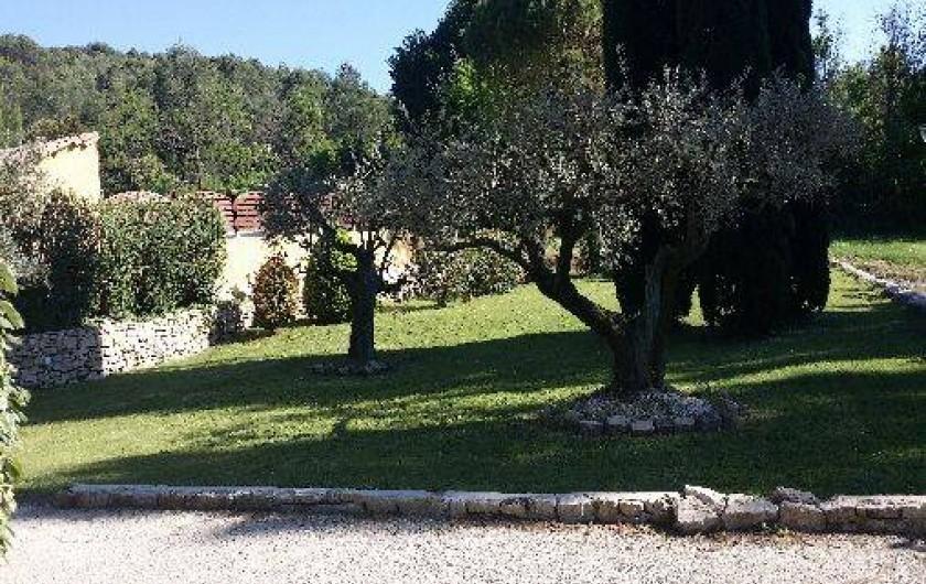 Location de vacances - Maison - Villa à Loriol-du-Comtat
