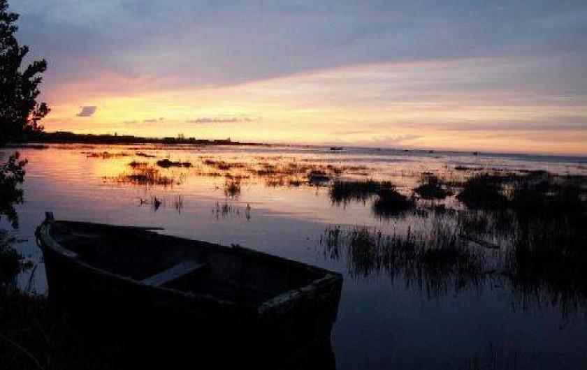 Location de vacances - Chambre d'hôtes à Gujan-Mestras - Les paysages typiques selon la marée