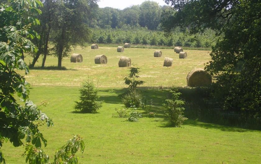 Location de vacances - Maison - Villa à Vitry-aux-Loges - Vue campagne