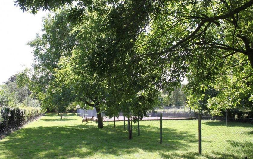 Location de vacances - Maison - Villa à Sailly Bray - pature