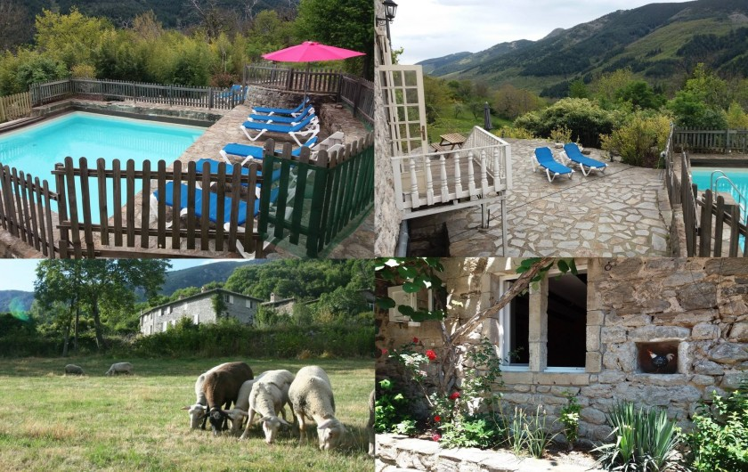 Location de vacances - Gîte à Valgorge - Avons 2 piscines , rien que pour nos hôtes!