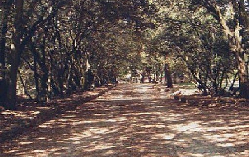 Location de vacances - Gîte à Mormoiron