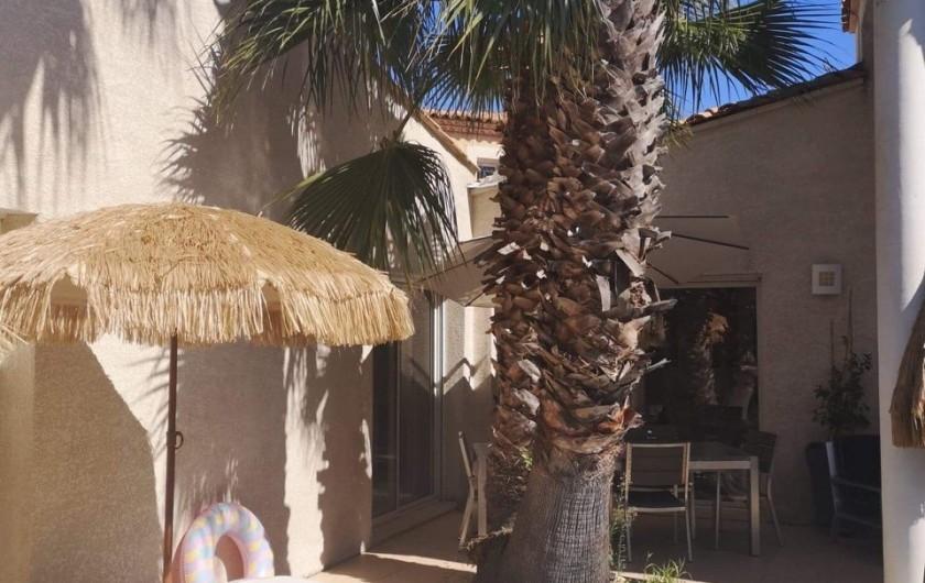 Location de vacances - Villa à Le Grau-du-Roi - Autour de la piscine ( 2 )
