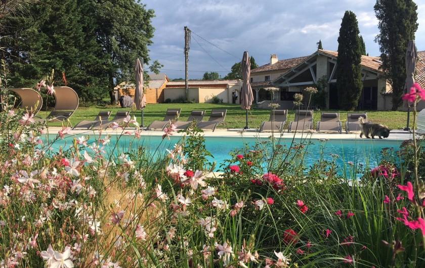 Location de vacances - Gîte à Lougratte - parc et sa piscine à partagée avec les 3 gîtes